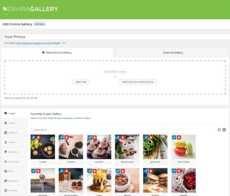 What is Envira Gallery WordPress Plugin