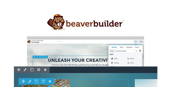 How Beaver Builder Plugin works