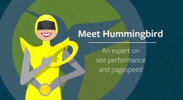 How WPMU DEV Hummingbird Pro works