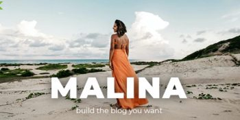 Malina v2.1.1 - Personal WordPress Blog Theme