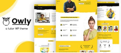 Owly - Tutor, Training WordPress, elearning Theme