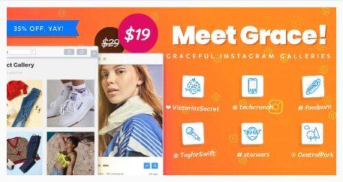 Instagram Feed Gallery - Grace for WordPress