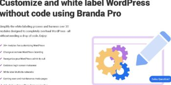 WPMU DEV Branda Pro