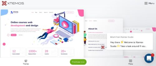 Sylvia - special template for education and online courses