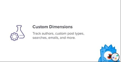 MonsterInsights Custom Dimensions Addon