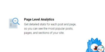 MonsterInsights Page Insights Addon